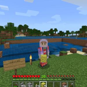 人口が増えすぎた村を拡張?湖の水抜き作業開始?(^^;)(Minecraft , Xbox One)