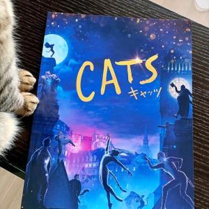 4773 * 映画版『Cats』 *