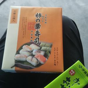 わーい。今日のロケ弁は「柿の葉寿司」♪