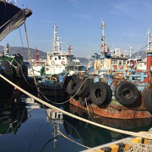 〈釜山旅行〉漁港とアートの出会い「カンカンイの道」を歩く