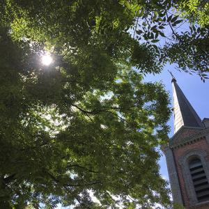 〈秋の原州旅行〉龍召幕聖堂
