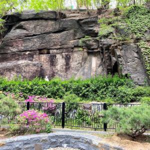 安定寺の摩崖仏とソウルの森の辺境的風景
