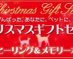 【クリスマスギフトセット】メモリーオイル+遠隔ヒーリング、受付開始です♪
