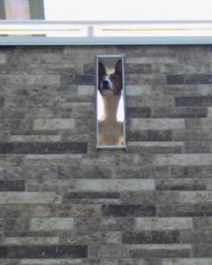 ベランダ壁のスリット開口