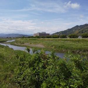 静岡市境縦走その4 三ツ野から清笹峠。