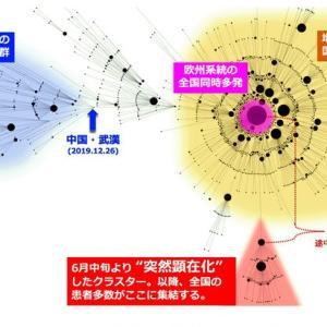 国立感染症研究所「移動の自粛が緩和されたあと、見えないまま続いていた感染が、全国に広がった」→全国1606人・沖縄100人・大阪255人など最悪更新し続けに←全部Gotoのせい。