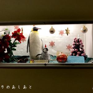 宮城県立こども病院12月の展示『コウテイペンギン』