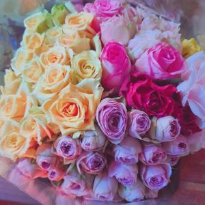 【悲報】センスゼロ!おかくみこのお花のある生活。