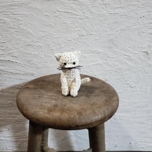 白猫ちゃん♪