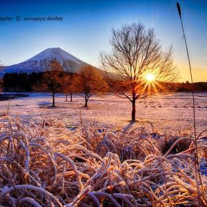 寒い朝は朝日の温もりが有り難い!