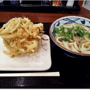 「 丸亀製麺 八乙女店」で大きなお世話します