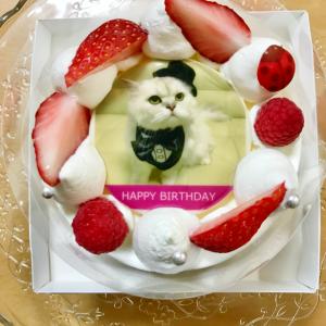 今年も写真ケーキでお祝い