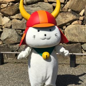 彦根城でひこにゃんに会ってきました