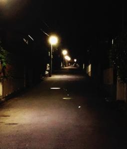 3大日本の幽霊のおかしいところ → 「若い女性しかいない」「夜にしか活動しない」「」?