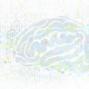 柔らかな脳、拮抗する脳
