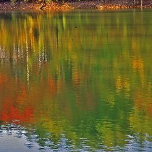 湖面の表情秋模様