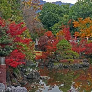 紅葉の美術館庭園