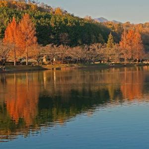 晩秋の山の中の小さな湖