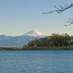 湖畔越しの冬富士