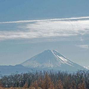 冬富士望遠 2
