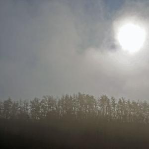 霧にむせぶ太陽