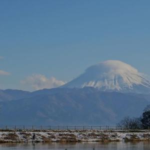 富士山望遠 2