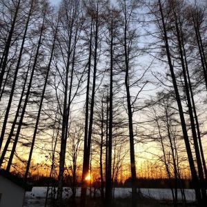 冬の夜明け 12月9日