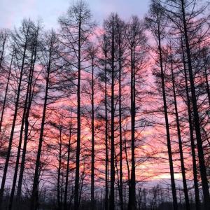 冬の夜明け 12月10日