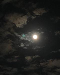 ★新月に願いを、満月に感謝を~5月の牡牛座新月からの実り