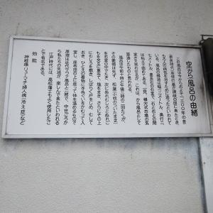 R2.6.14さぬき市、昭和、行基苑の紫陽花見物とサウナ空風呂