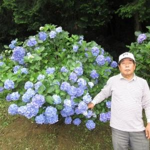 R2.6.20高松市西植田町、勝名寺の紫陽花見物