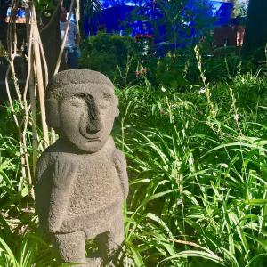 フリーダ・カーロ博物館の庭