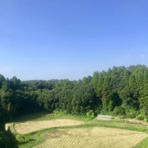 稲刈り後の田(外房線の車窓から)