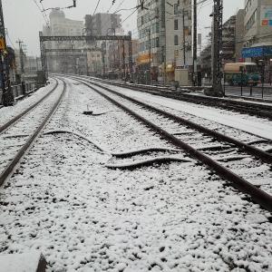 急な雪で寒い、、、