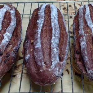 今年の初焼きパン