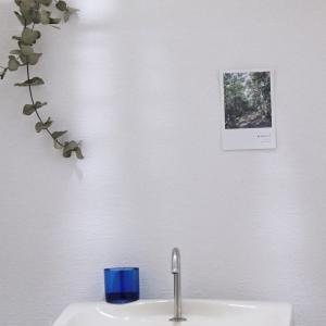 【クッションフロア】でトイレの床をDIY~♪