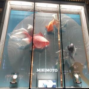 銀座 ミキモト 銀座一でっかいウィンドウディスプレイ Ginza MIKIMOTO