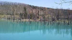 北海道旅行~富良野の秋限定土産と美瑛の無料で楽しめるスポット