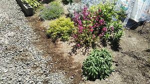 お手軽ガーデニング&庭のDIY~レンガで囲いを作ってみる♪ 作業過程画像で公開