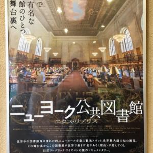 ニューヨーク公共図書館 からの梅田蔦屋