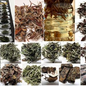 マニアな中国茶会【白茶の飲み比べ Part1】梅田教室