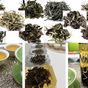 マニアな中国茶会【白茶の飲み比べ Part2】梅田教室