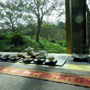 茶遊サロン 茶藝発表会 梅小路公園 緑の館