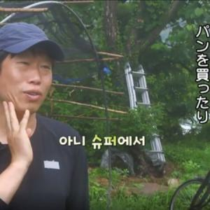 【コラム】三食ごはん 高敞編 第5話 スイカの収穫