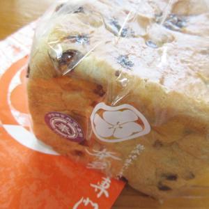 熟成純生 食パン専門店 本多 岐阜多治見店(極ぶどう食パン編)