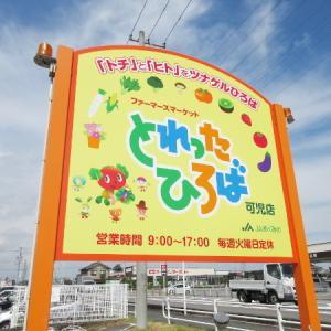 【可児市情報】とれったひろば可児店(野菜編)
