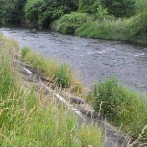 うちの下の川岸草刈り
