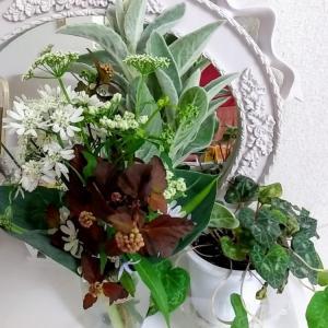 部屋の花とグリーン