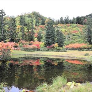 大雪山系・・紅葉の高原沼めぐり