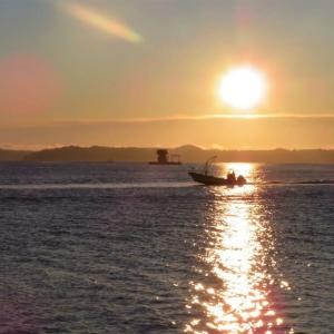 漁港の日の出